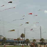 ./photos/galveston_july_2008/23_kites_in_galveston.jpg